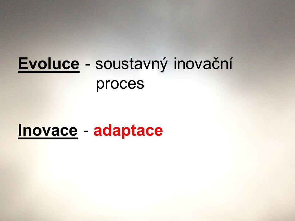 Evoluce - soustavný inovační proces Inovace - adaptace