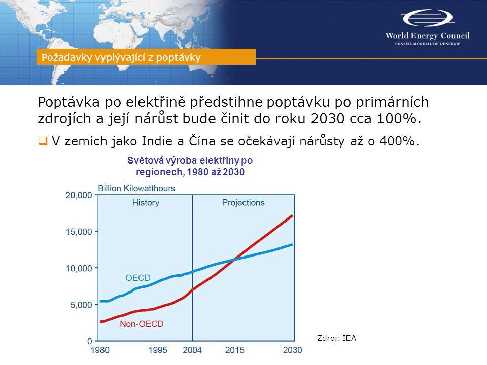 Poptávka po elektřině předstihne poptávku po primárních zdrojích a její nárůst bude činit do roku 2030 cca 100%.  V zemích jako Indie a Čína se očeká