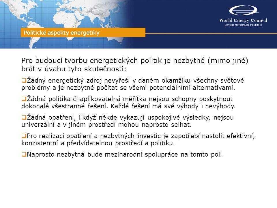 Pro budoucí tvorbu energetických politik je nezbytné (mimo jiné) brát v úvahu tyto skutečnosti:  Žádný energetický zdroj nevyřeší v daném okamžiku vš
