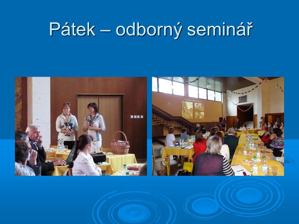 Pátek – odborný seminář