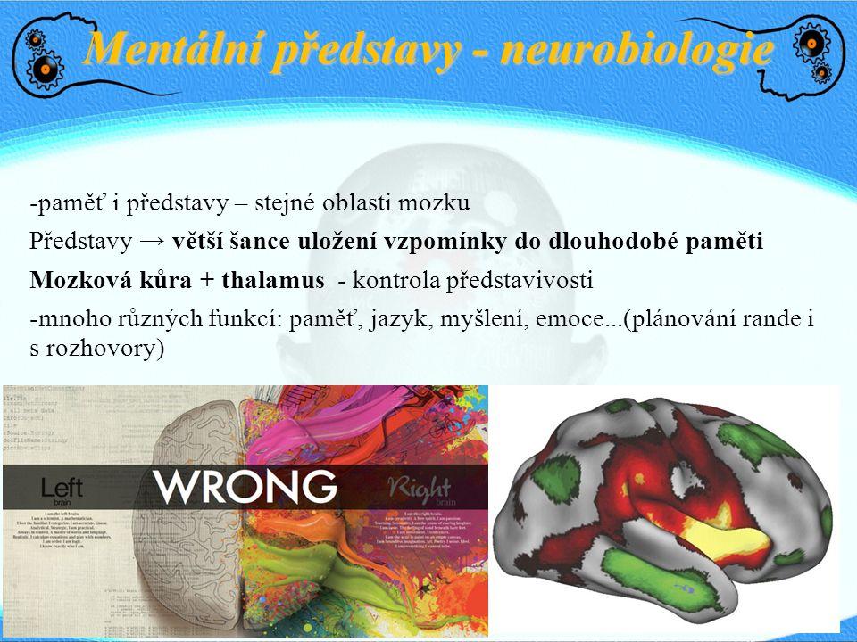 Mentální představy - neurobiologie -paměť i představy – stejné oblasti mozku Představy → větší šance uložení vzpomínky do dlouhodobé paměti Mozková ků
