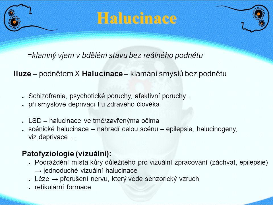 Halucinace Iluze – podnětem X Halucinace – klamání smyslů bez podnětu =klamný vjem v bdělém stavu bez reálného podnětu ● Schizofrenie, psychotické por