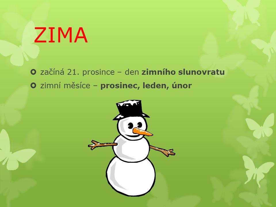 ZIMA  začíná 21. prosince – den zimního slunovratu  zimní měsíce – prosinec, leden, únor