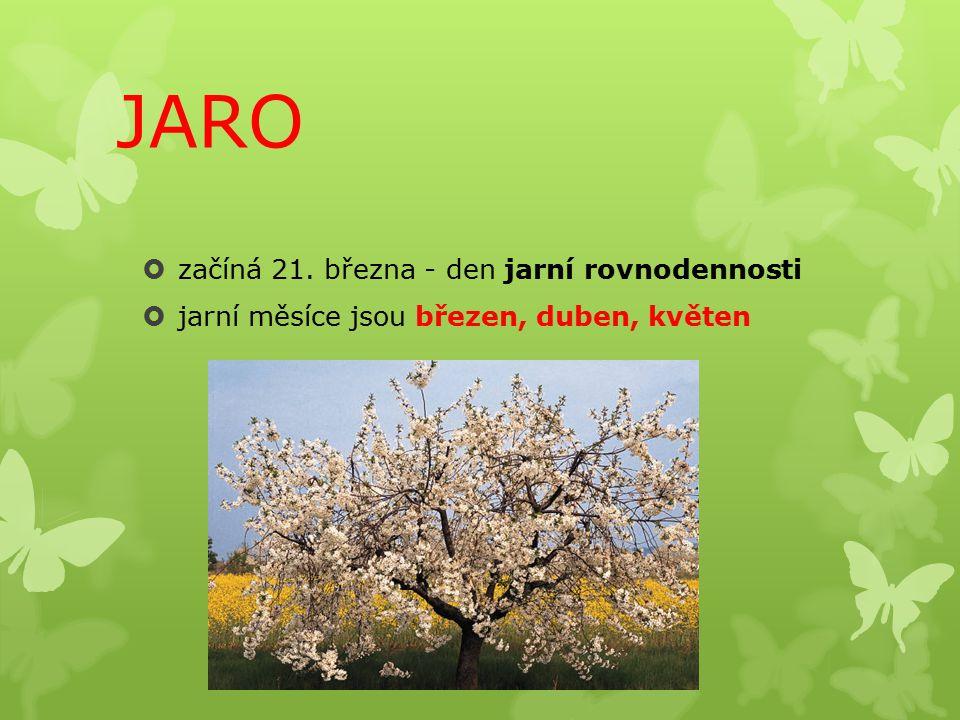 JARO  začíná 21. března - den jarní rovnodennosti  jarní měsíce jsou březen, duben, květen