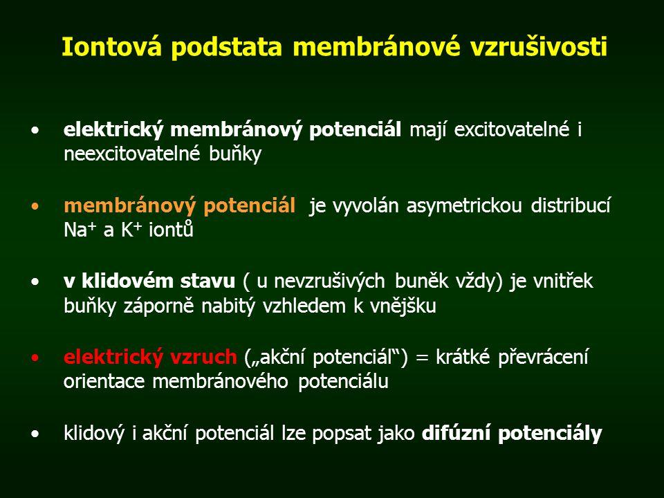 Iontová podstata membránové vzrušivosti elektrický membránový potenciál mají excitovatelné i neexcitovatelné buňky membránový potenciál je vyvolán asy