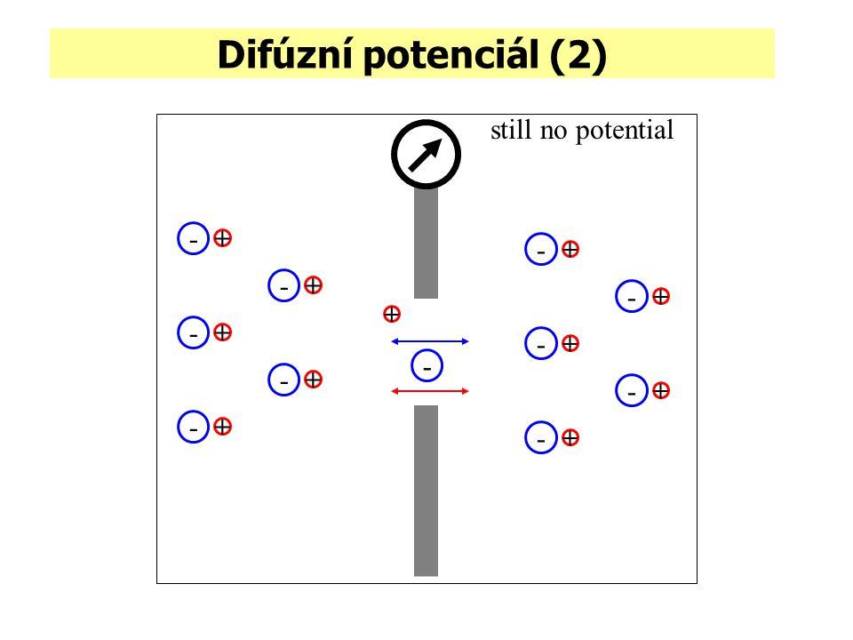 Difúzní potenciál (2) still no potential + - - + - + - + - + - + - + - + - + - + - +