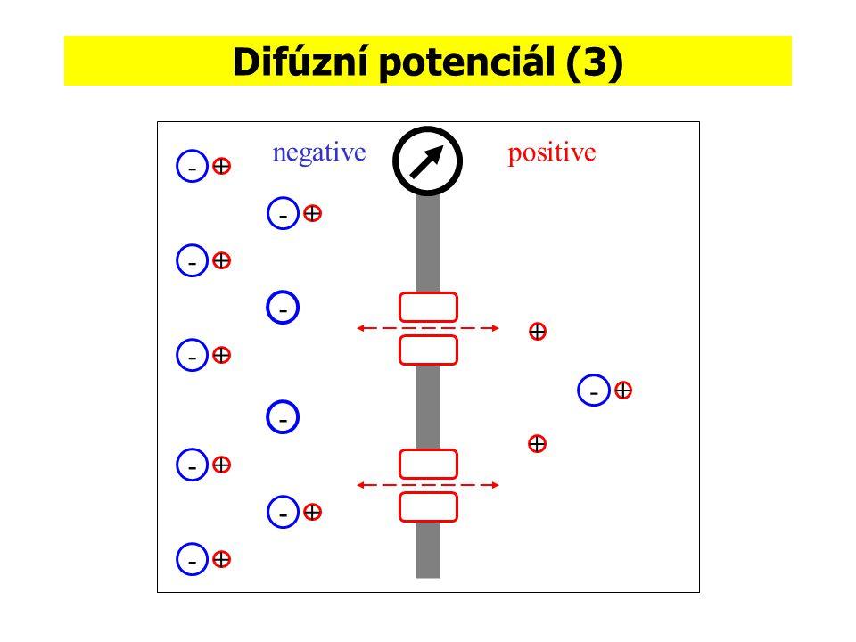 Difúzní potenciál (3) negativepositive - + - + - + - + - + - + - + - + - + - +