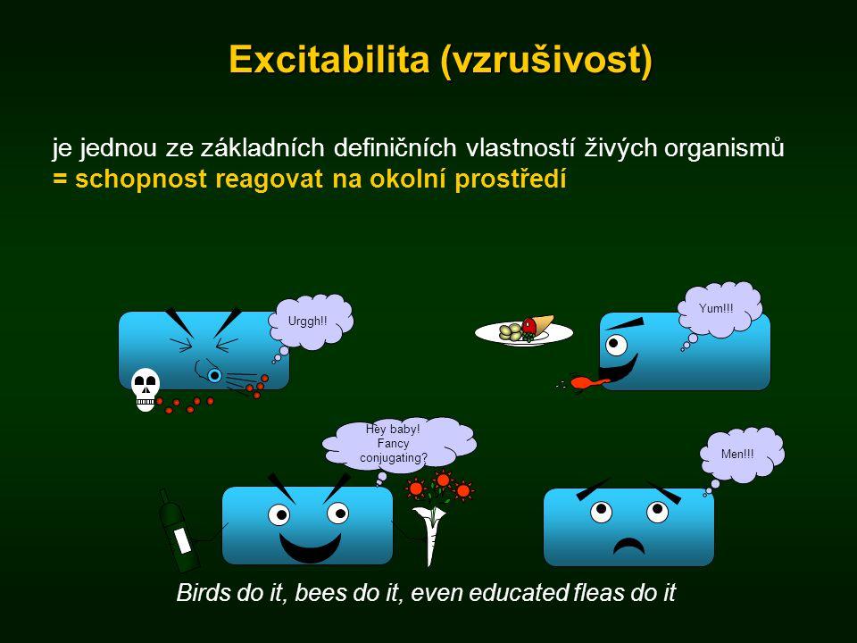Excitabilita (vzrušivost) je jednou ze základních definičních vlastností živých organismů = schopnost reagovat na okolní prostředí Urggh!!Yum!!! Birds