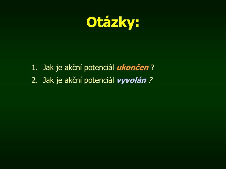 Otázky: 1.Jak je akční potenciál ukončen ? 2.Jak je akční potenciál vyvolán ?
