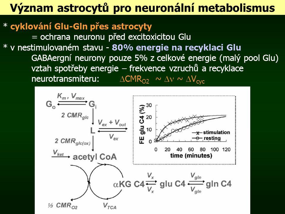 Význam astrocytů pro neuronální metabolismus * cyklování Glu-Gln přes astrocyty = ochrana neuronu před excitoxicitou Glu * v nestimulovaném stavu - 80