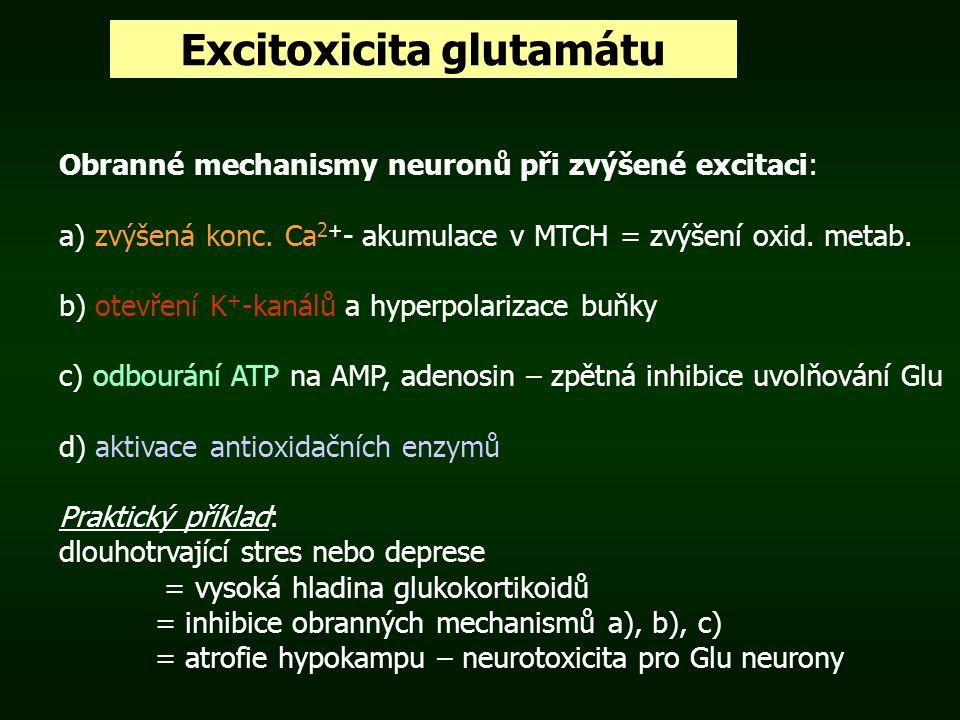 Excitoxicita glutamátu Obranné mechanismy neuronů při zvýšené excitaci: a) zvýšená konc. Ca 2+ - akumulace v MTCH = zvýšení oxid. metab. b) otevření K