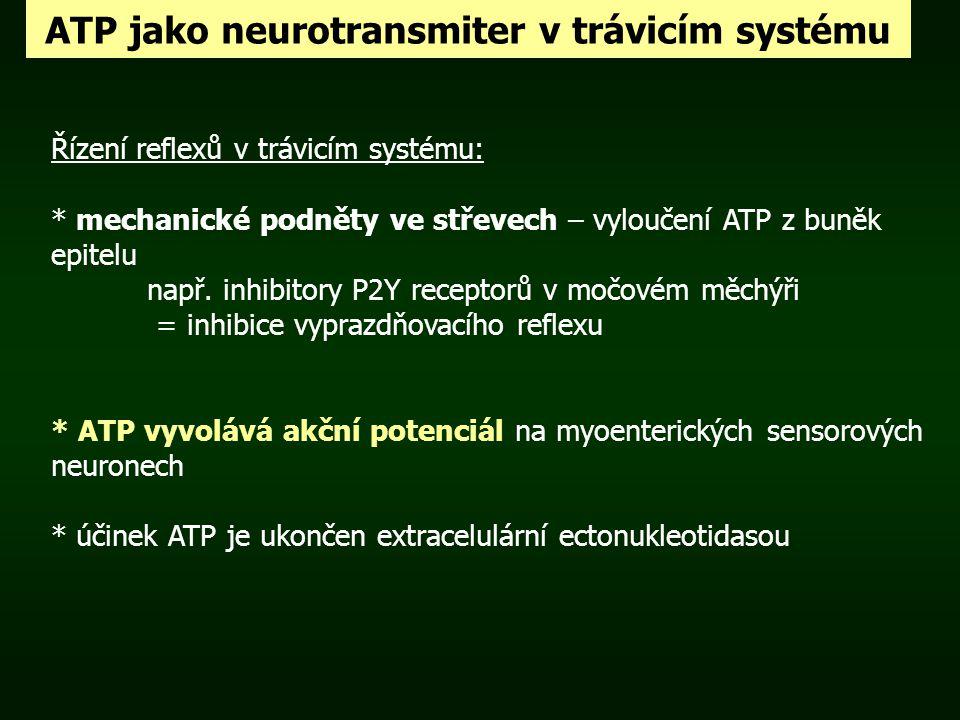 ATP jako neurotransmiter v trávicím systému Řízení reflexů v trávicím systému: * mechanické podněty ve střevech – vyloučení ATP z buněk epitelu např.
