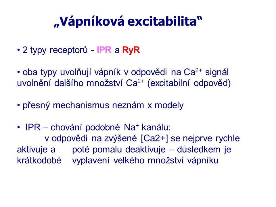 """""""Vápníková excitabilita"""" 2 typy receptorů - IPR a RyR oba typy uvolňují vápník v odpovědi na Ca 2+ signál uvolnění dalšího množství Ca 2+ (excitabilní"""
