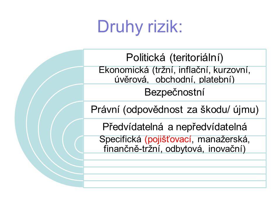 Druhy rizik: Politická (teritoriální) Ekonomická (tržní, inflační, kurzovní, úvěrová, obchodní, platební) Bezpečnostní Právní (odpovědnost za škodu/ újmu) Předvídatelná a nepředvídatelná Specifická (pojišťovací, manažerská, finančně-tržní, odbytová, inovační)