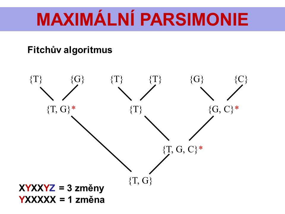 MAXIMÁLNÍ PARSIMONIE {T} {G} {T} {T} {G} {C} {T, G}* {T} {G, C}* {T, G, C}* {T, G} Fitchův algoritmus XYXXYZ = 3 změny YXXXXX = 1 změna