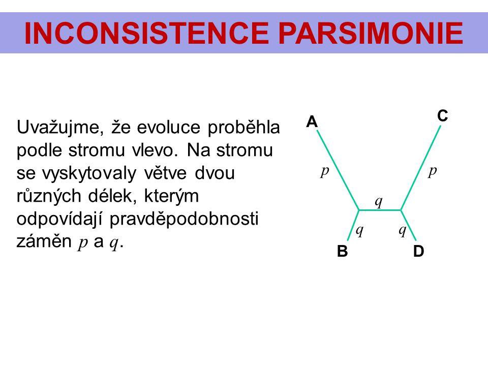 INCONSISTENCE PARSIMONIE pp q qq A C BD Uvažujme, že evoluce proběhla podle stromu vlevo. Na stromu se vyskytovaly větve dvou různých délek, kterým od