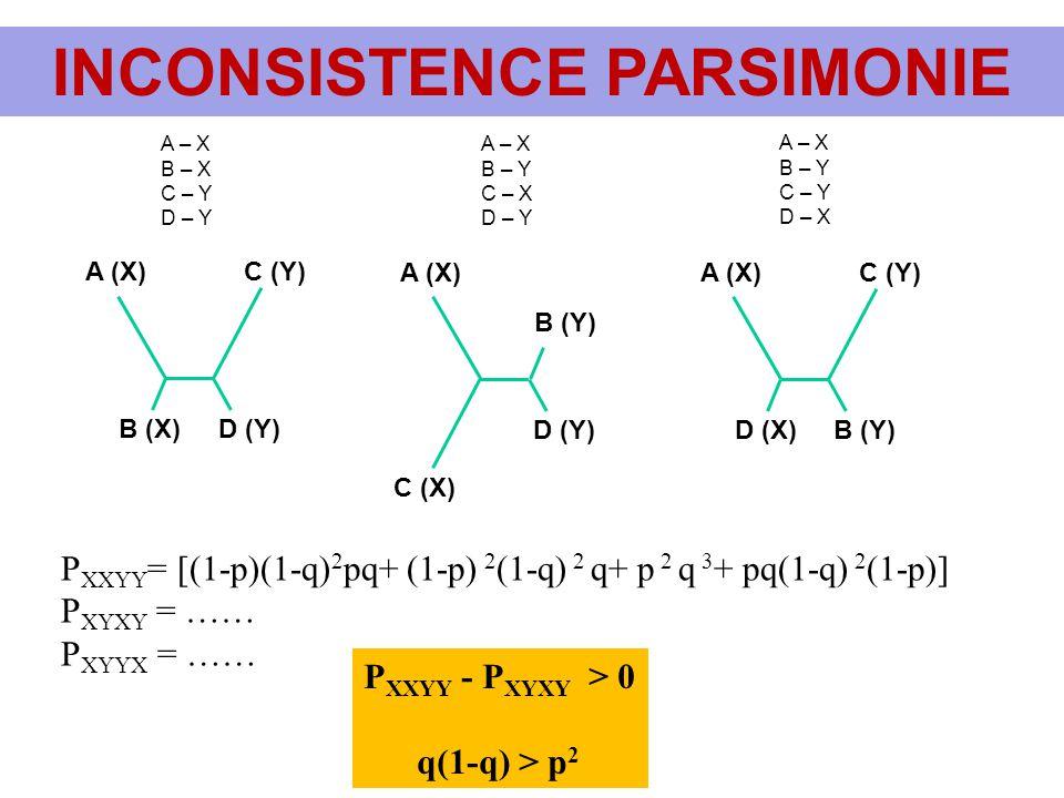 INCONSISTENCE PARSIMONIE A (X)C (Y) B (X)D (Y) A (X) C (X) B (Y) D (Y) A (X)C (Y) B (Y) D (X) A – X B – X C – Y D – Y A – X B – Y C – X D – Y A – X B
