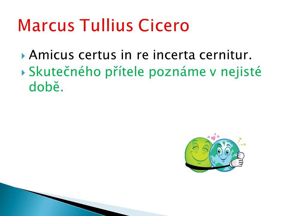  Amicus certus in re incerta cernitur.  Skutečného přítele poznáme v nejisté době.