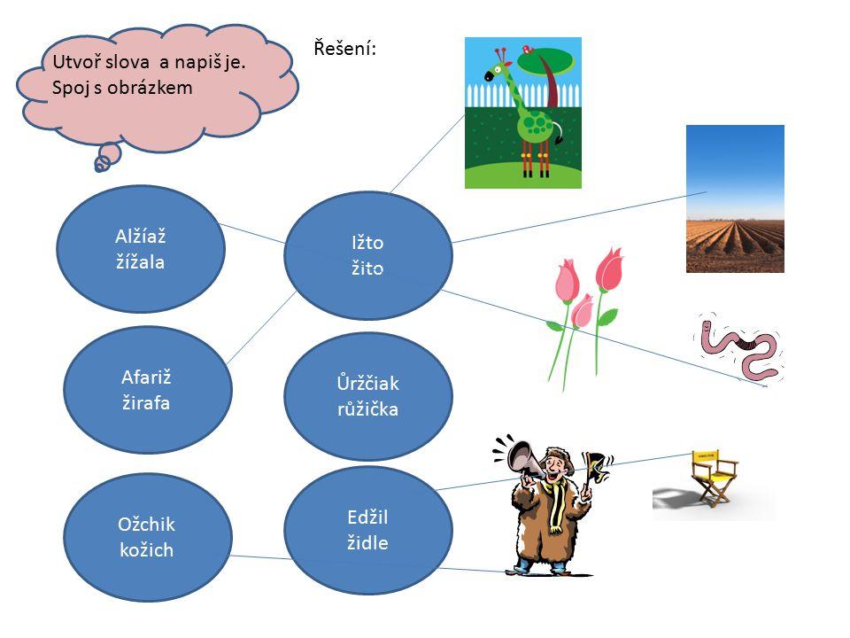 Utvoř slova a napiš je. Spoj s obrázkem Alžíaž žížala Edžil židle Afariž žirafa Ižto žito Ůržčiak růžička Ožchik kožich Řešení:
