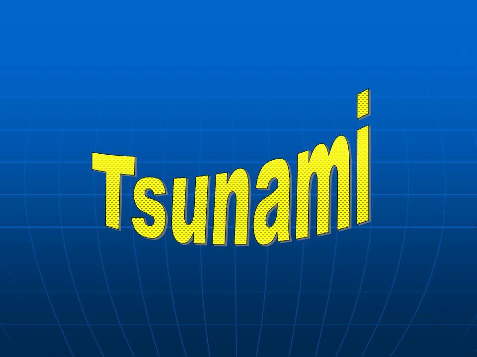 Vznik vlny Tsunami je dlouhá a rychlá vlna, která vzniká při pohybu oceánského dna, kdy dochází ke zvlnění vodního sloupce.