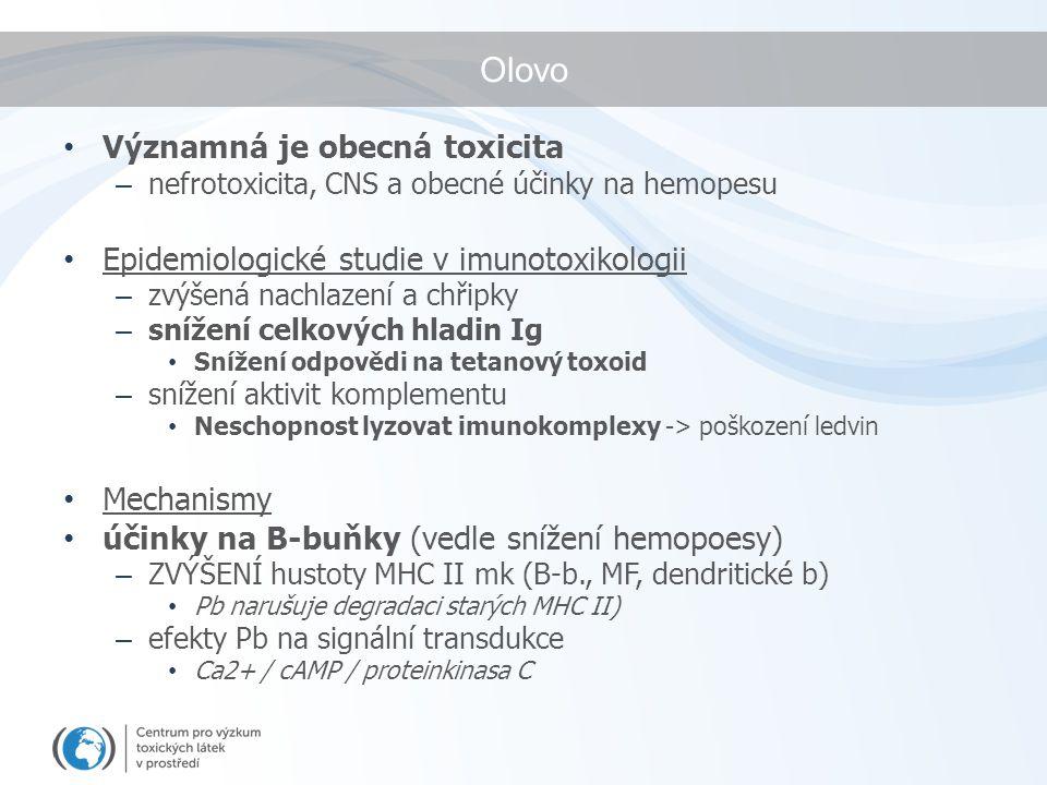 Olovo Významná je obecná toxicita – nefrotoxicita, CNS a obecné účinky na hemopesu Epidemiologické studie v imunotoxikologii – zvýšená nachlazení a chřipky – snížení celkových hladin Ig Snížení odpovědi na tetanový toxoid – snížení aktivit komplementu Neschopnost lyzovat imunokomplexy -> poškození ledvin Mechanismy účinky na B-buňky (vedle snížení hemopoesy) – ZVÝŠENÍ hustoty MHC II mk (B-b., MF, dendritické b) Pb narušuje degradaci starých MHC II) – efekty Pb na signální transdukce Ca2+ / cAMP / proteinkinasa C