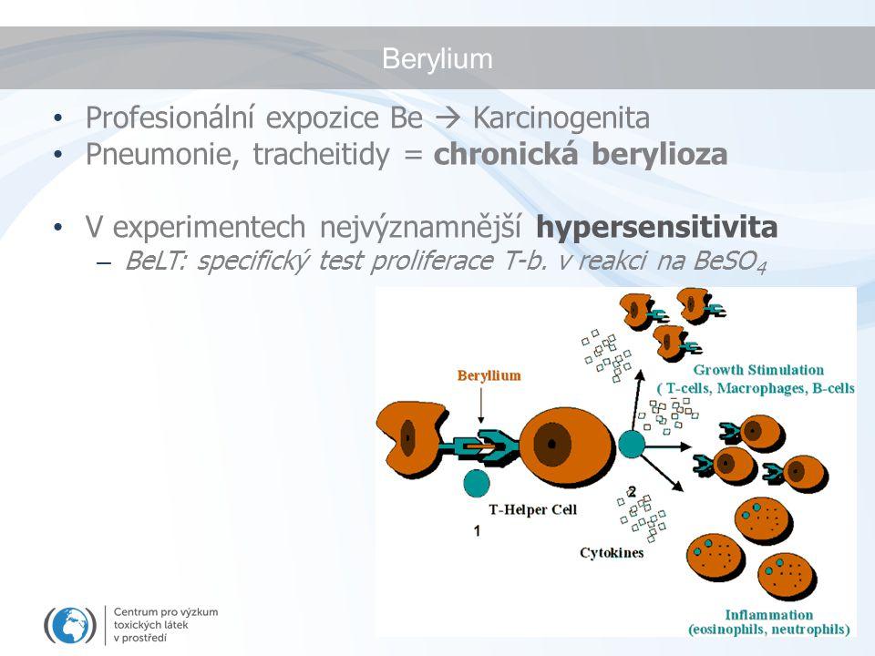 Berylium Profesionální expozice Be  Karcinogenita Pneumonie, tracheitidy = chronická berylioza V experimentech nejvýznamnější hypersensitivita – BeLT