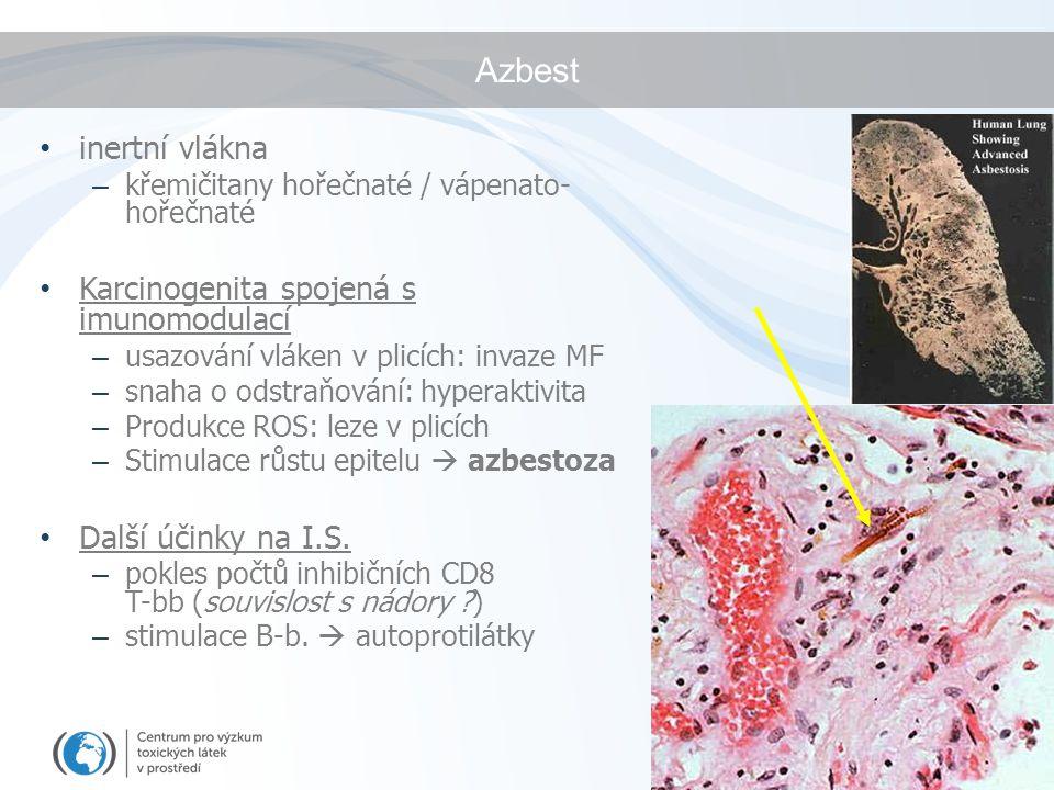 Azbest inertní vlákna – křemičitany hořečnaté / vápenato- hořečnaté Karcinogenita spojená s imunomodulací – usazování vláken v plicích: invaze MF – snaha o odstraňování: hyperaktivita – Produkce ROS: leze v plicích – Stimulace růstu epitelu  azbestoza Další účinky na I.S.