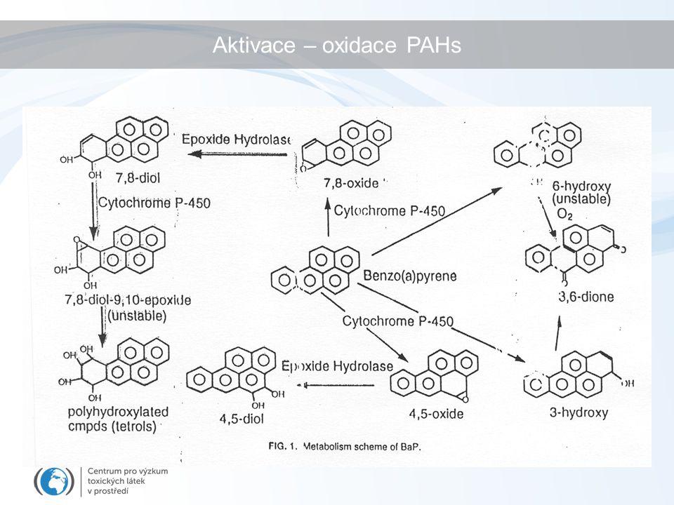 Aktivace – oxidace PAHs