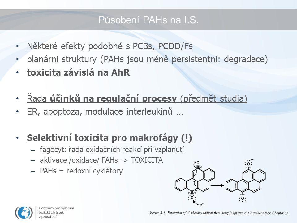 Působení PAHs na I.S. Některé efekty podobné s PCBs, PCDD/Fs planární struktury (PAHs jsou méně persistentní: degradace) toxicita závislá na AhR Řada