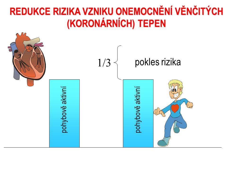 POZITIVNÍ VLIV POHYBOVÉ AKTIVITY NA ZDRAVÍ ČLOVĚKA redukce rizika koronárního onemocnění zlepšení kvality života zvýšení tělesné zdatnosti redukce stresu zvýšení efektivity práce srdce redukce volných radikálů redukce krevního tlaku redukce krevního tlaku redukce vzniku aterosklerózy redukce inzulínové rezistence redukce zvýšené hladiny inzulínu prevence diabetes mellitus 2.