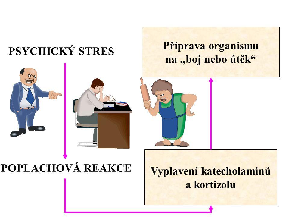ŽIVOTNÍ STYL SPRÁVNÝ ŽIVOTNÍ STYL  odpovídající pohybová aktivita  optimální energetický příjem (energie, frekvence, pestrost, tekutiny, stolování, atd.)  redukce stresu (zaměstnání, denní režim, atd.)  eliminace zlozvyků (alkohol, kouření, drogy, atd.)  odpovídající regenerace (dostatek spánku, psychická regenerace, atd.) 1 2 3 4 5