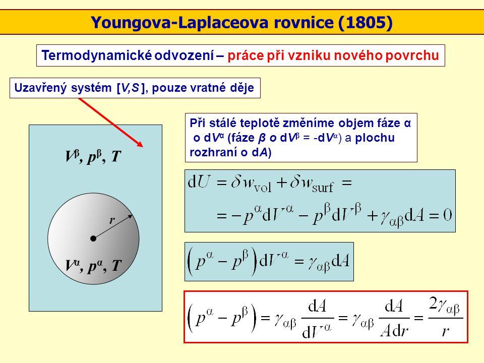 V α, p α, T V β, p β, T r Uzavřený systém [V,S ], pouze vratné děje Při stálé teplotě změníme objem fáze α o dV α (fáze β o dV β = -dV α ) a plochu ro