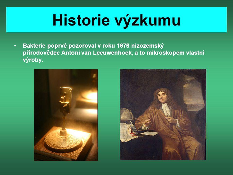Historie výzkumu Bakterie poprvé pozoroval v roku 1676 nizozemský přírodovědec Antoni van Leeuwenhoek, a to mikroskopem vlastní výroby.