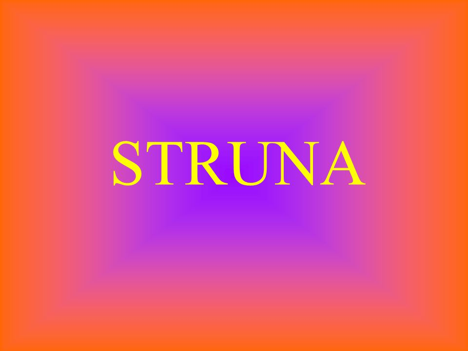 STRUNA