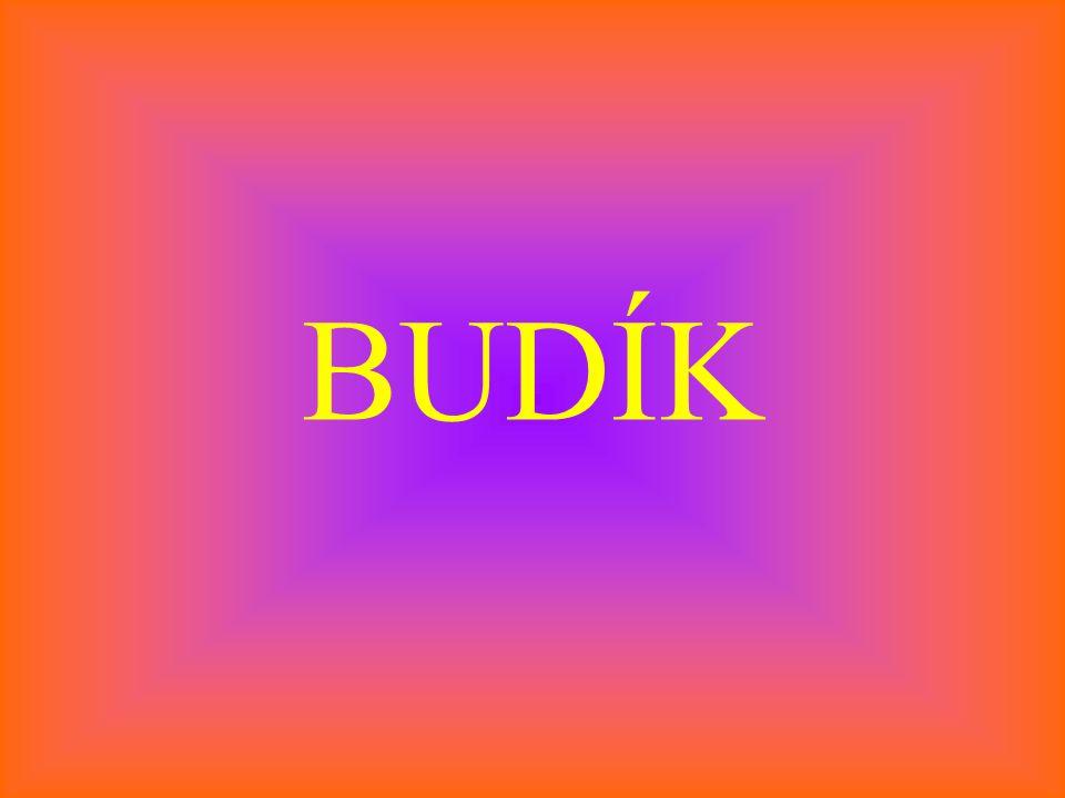 BUDÍK