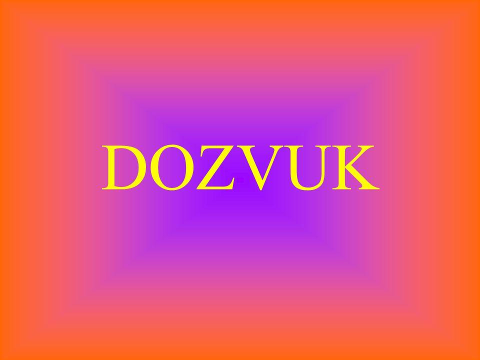 DOZVUK