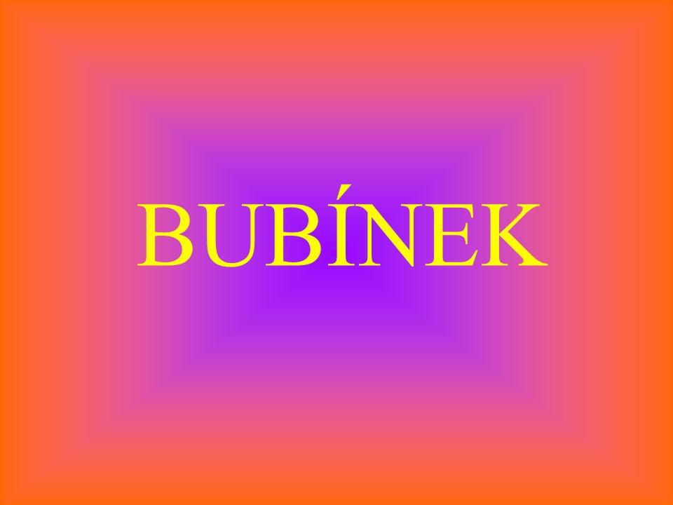 BUBÍNEK