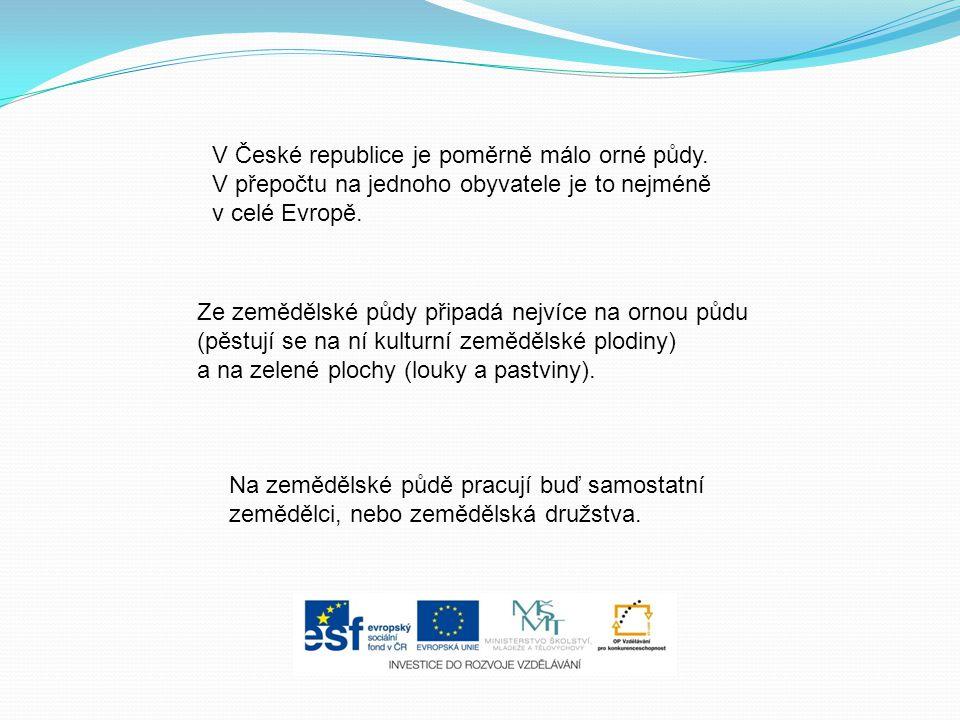 V České republice je poměrně málo orné půdy. V přepočtu na jednoho obyvatele je to nejméně v celé Evropě. Ze zemědělské půdy připadá nejvíce na ornou