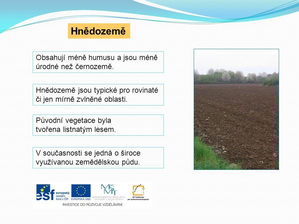 V současnosti se jedná o široce využívanou zemědělskou půdu. Hnědozemě Obsahují méně humusu a jsou méně úrodné než černozemě. Hnědozemě jsou typické p
