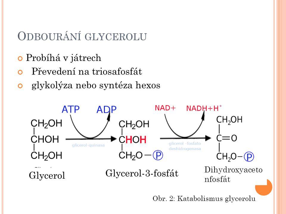 O DBOURÁNÍ GLYCEROLU Probíhá v játrech Převedení na triosafosfát glykolýza nebo syntéza hexos Glycerol Glycerol-3-fosfát Dihydroxyaceto nfosfát Obr. 2