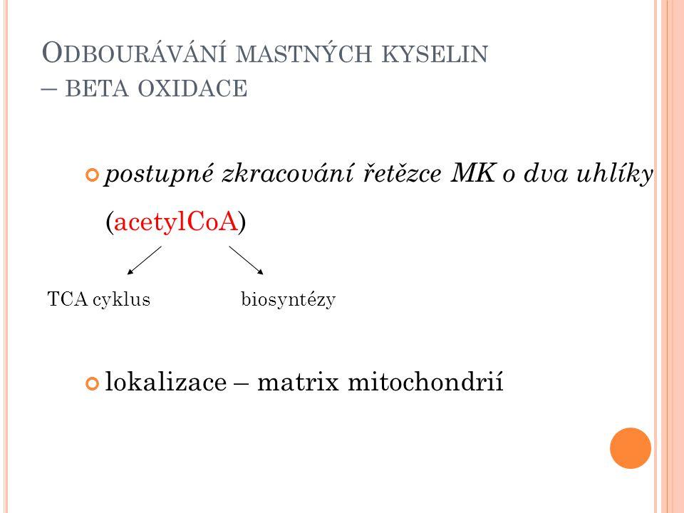 O DBOURÁVÁNÍ MASTNÝCH KYSELIN – BETA OXIDACE postupné zkracování řetězce MK o dva uhlíky (acetylCoA) lokalizace – matrix mitochondrií TCA cyklusbiosyn