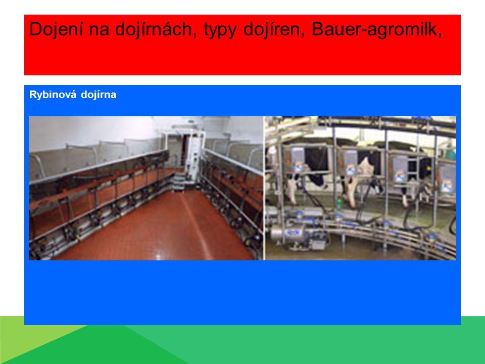 Dojení na dojírnách, typy dojíren, Bauer-agromilk, Rybinová dojírna