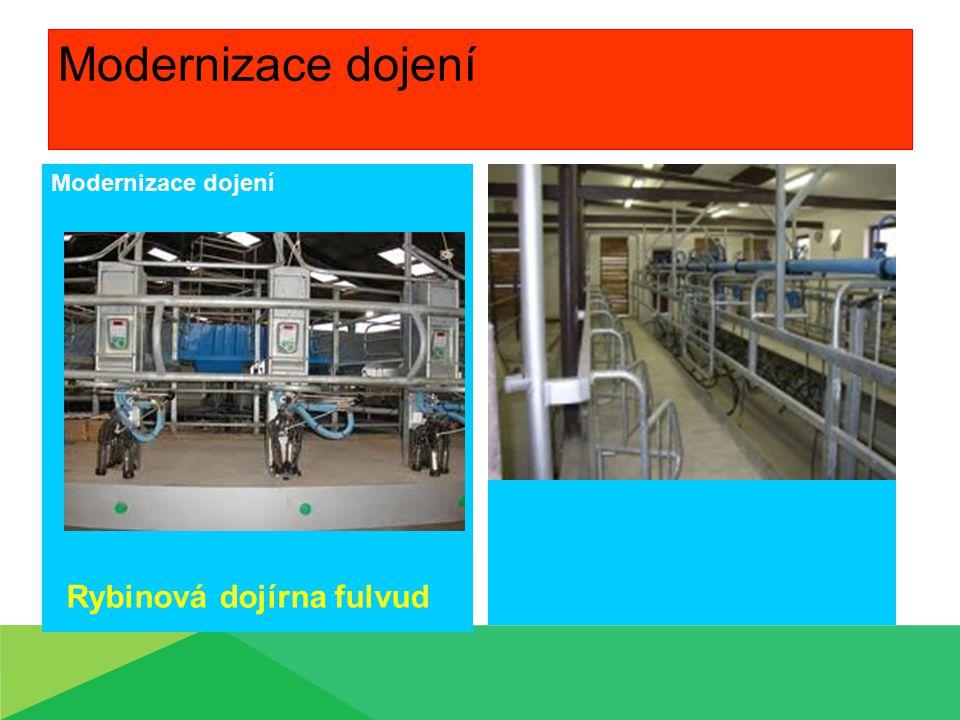 Modernizace dojení Rybinová dojírna fulvud