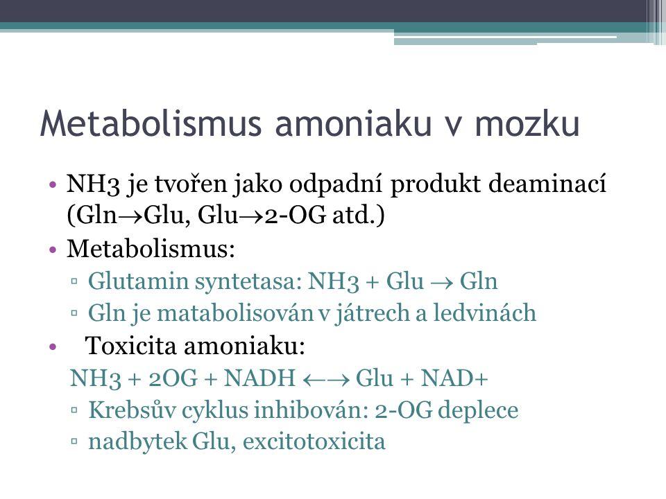 Metabolismus amoniaku v mozku NH3 je tvořen jako odpadní produkt deaminací (Gln  Glu, Glu  2-OG atd.) Metabolismus: ▫Glutamin syntetasa: NH3 + Glu  Gln ▫Gln je matabolisován v játrech a ledvinách Toxicita amoniaku: NH3 + 2OG + NADH  Glu + NAD+ ▫Krebsův cyklus inhibován: 2-OG deplece ▫nadbytek Glu, excitotoxicita