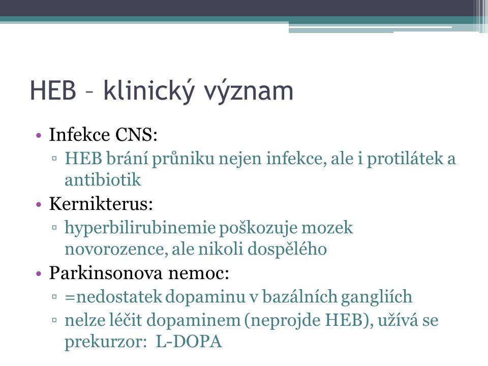 HEB – klinický význam Infekce CNS: ▫HEB brání průniku nejen infekce, ale i protilátek a antibiotik Kernikterus: ▫hyperbilirubinemie poškozuje mozek novorozence, ale nikoli dospělého Parkinsonova nemoc: ▫=nedostatek dopaminu v bazálních gangliích ▫nelze léčit dopaminem (neprojde HEB), užívá se prekurzor: L-DOPA