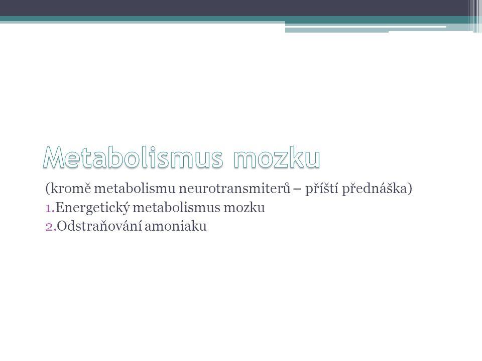 (kromě metabolismu neurotransmiterů – příští přednáška) 1.Energetický metabolismus mozku 2.Odstraňování amoniaku