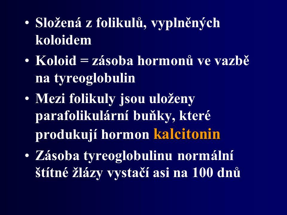 Složená z folikulů, vyplněných koloidem Koloid = zásoba hormonů ve vazbě na tyreoglobulin kalcitoninMezi folikuly jsou uloženy parafolikulární buňky, které produkují hormon kalcitonin Zásoba tyreoglobulinu normální štítné žlázy vystačí asi na 100 dnů