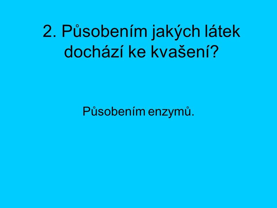 3. Jak vznikají enzymy? Vytvářejí je mikroorganizmy.