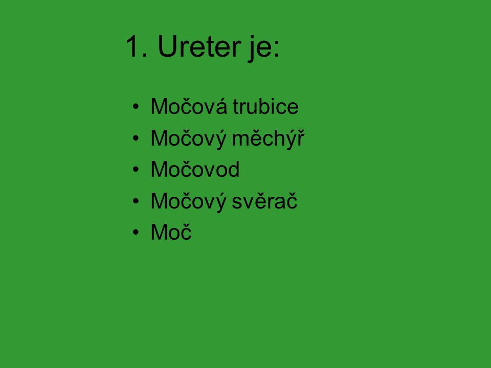 1. Ureter je: Močová trubice Močový měchýř Močovod Močový svěrač Moč