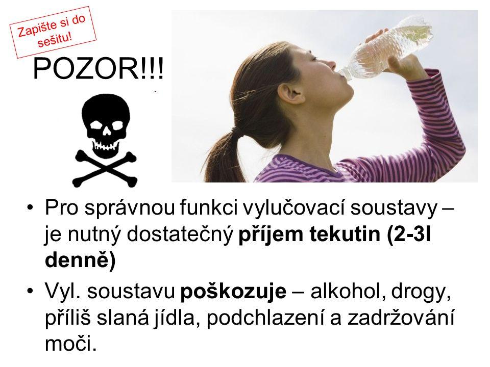 POZOR!!! Pro správnou funkci vylučovací soustavy – je nutný dostatečný příjem tekutin (2-3l denně) Vyl. soustavu poškozuje – alkohol, drogy, příliš sl